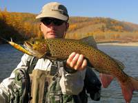 Sport fishing for Eastern Hucho Taimen, Spotted Amur Pike, Eastern Lenok Trout