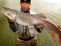 Sport fishing for Hucho Taimen, Lenok Trout, and Baikal Grayling