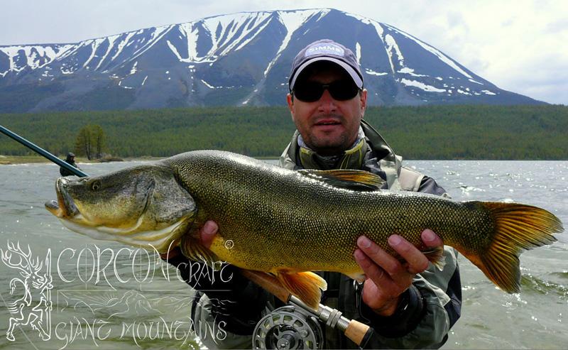 Fishing Season MONGOLIA Spring 2014 - Fly Fishing Tours ... Осман Рыба