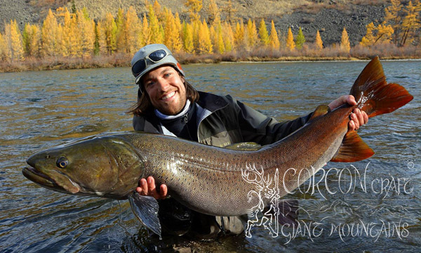 Fly fishing Taimen Mongolia 2014
