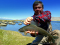 Probably the biggest Grayling in the World